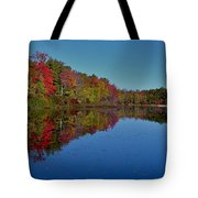 Reflected Color Tote Bag