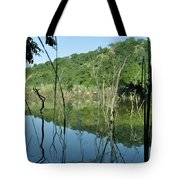 Reflected Lines Tote Bag