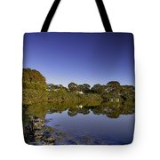 Reflected Tranquility Tote Bag
