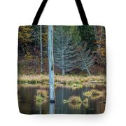 Reflected Tree Tote Bag