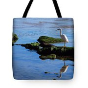 Reflecting On Dinner Tote Bag