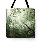 Reflecting Pond Tote Bag