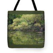 Reflecting Spring Green Tote Bag