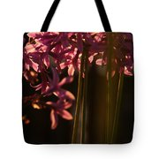 Reflecting The Day Tote Bag
