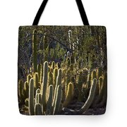 Reflecting The Sunshine Tote Bag