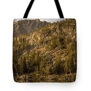 Reflecting Thoughts Tote Bag