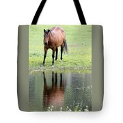 Reflecting Horse Near Water Tote Bag