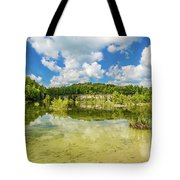 Reflecting Tranquility Tote Bag