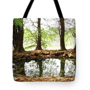 Reflecting Tree Trunks Tote Bag