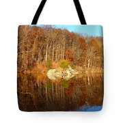 Reflection Tote Bag