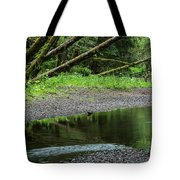 Reflection And Lines Tote Bag