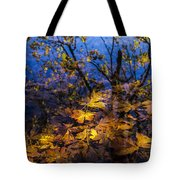 Reflection And Transparency Tote Bag