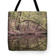Ridge Run Reflection Tote Bag