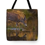 Reflection In The Stream Tote Bag