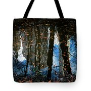 Reflection 3 Tote Bag