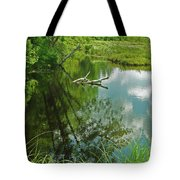 Reflection Of A Tree And Clouds Tote Bag