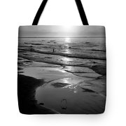 Reflection Of Bird In Flight Tote Bag