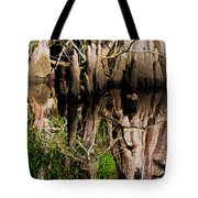 Reflection Of Cypress Knees Tote Bag