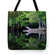 Reflection Off The Withlacoochee River Tote Bag