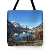 Reflection On St Mary Lake Through Burned Trees Tote Bag