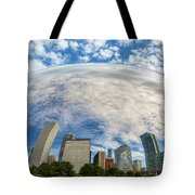 Reflection On The Bean Tote Bag