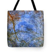Reflection#5 Tote Bag