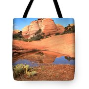 Reflections After The Storm Tote Bag