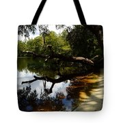 Reflections And Shadows Tote Bag by Warren Thompson