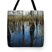 Reflections At Big Cypress Tote Bag