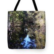 Reflections At Camps Creek  Tote Bag