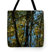 Reflections Fall Tote Bag
