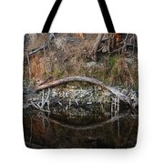 Reflections Iguana Tote Bag