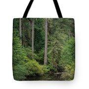 Reflections In Silver Falls State Park Tote Bag