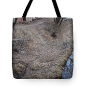 Reflections In The River Tote Bag