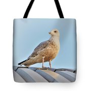 Reflections In The Sun Tote Bag