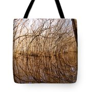Reflections In The Swamp Tote Bag