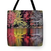 Reflections Of A Bare Grey Tree Tote Bag