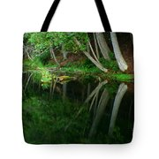 Reflections Of A Forest Tote Bag