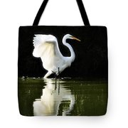 Reflections Of An Angel  Tote Bag