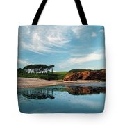 Reflections Of Budleigh Tote Bag