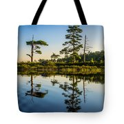 Reflections Of Dawn Tote Bag
