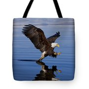 Reflections Of Eagle Tote Bag by John Hyde - Printscapes