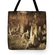Reflections Of Reality Tote Bag