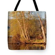 Reflections Of Spring Tote Bag