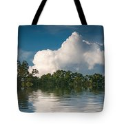 Reflections Of Trees And Clouds Tote Bag