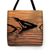 Reflective Abstract Tote Bag