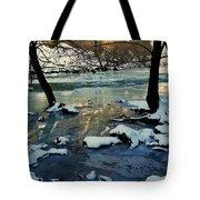 Reflective Chill Tote Bag