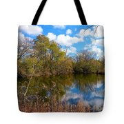 Reflective Cloudy Palatine, Il,  Library Pond Tote Bag