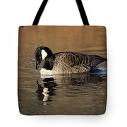 Reflective Moments Tote Bag