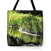 Reflective Shorelines Tote Bag